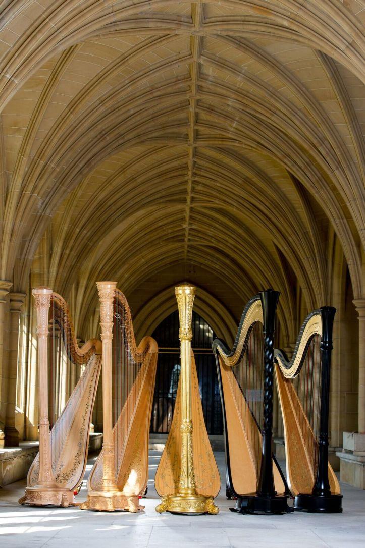 160816 DCOOL Harpists-35